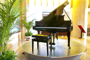 Hiring Digital & Grand Pianos Only at Broughton Pianos,  UK!