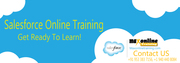 Salesforce Step-by-Step OnlineTraining