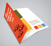 Design your Folded Leaflet Today with Printwin